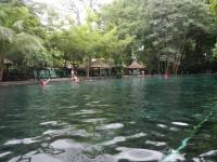 Springs on Isla De Ometepe.
