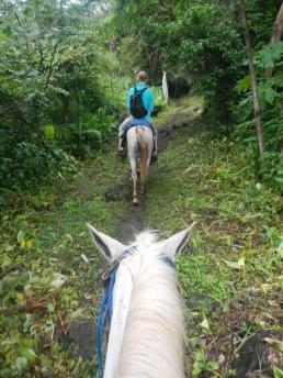 Isla De Ometepe horseback riding.
